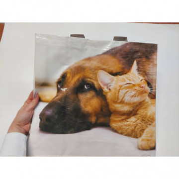 ECO FLOOR WOOD PŁYN DO MYCIA PANELI   1L